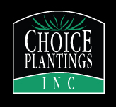 Choice Plantings