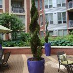 Spiral exterior plant design