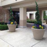 exterior plant design
