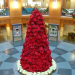 Poinsettias Tree holiday plant installation