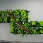 Living wall interior plant design